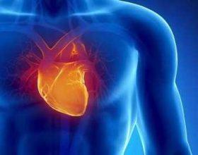 Vdekjet nga sëmundjet kardiovaskulare, gjithnjë e në rritje