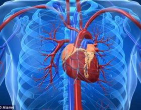 Si mund ta përmirësoj shpirtin dhe zemrën time?