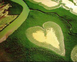 Ngjyra e gjelbërt dhe kënaqësia shpirtërore