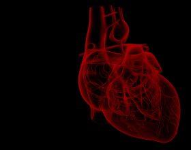 Pastro zemrën, dhe duaje për tjerët atë që do për vete