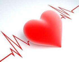 Zemra e mashkullit dhe e femrës