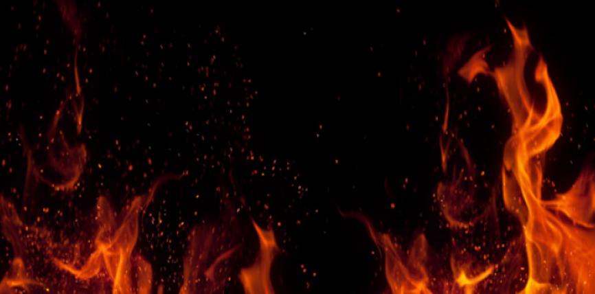 Libërthi – Xhinnët nga Ibn Tejmijje