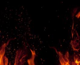 Prandaj dhe zjarri nuk do djegë kafshët, insektet, shpezët, foshnjet e as të çmendurit
